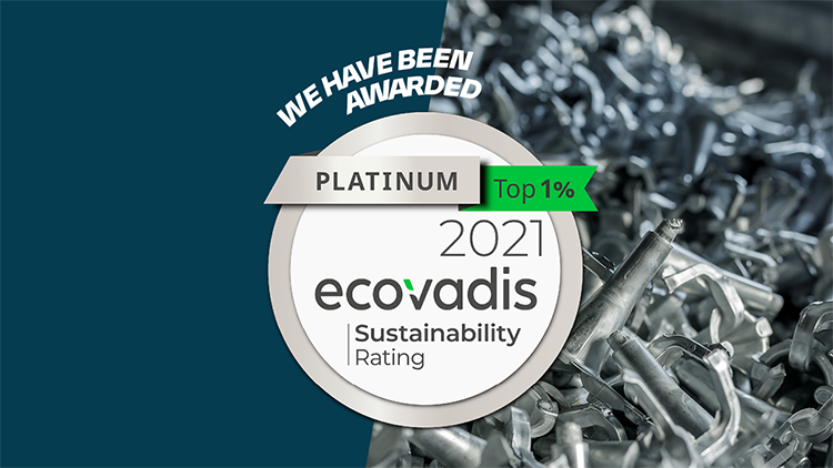 Ecovadis award: Platinum medal